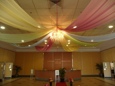 Ridley Pavilion Drapes & Extra Large Crystal Chandelier