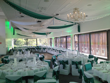 Zoo Sanctuary Green & wh Drapes with Chandeliers