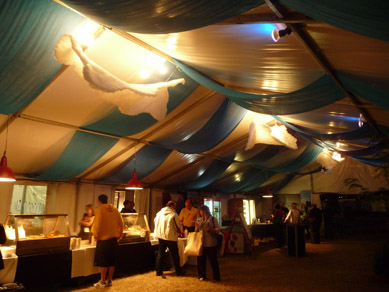 Draping & Bar Lights