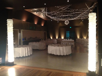 NWC Exhibition Hall Light Columns, Fairy Lights, Bud LIght Balls & Uplighting