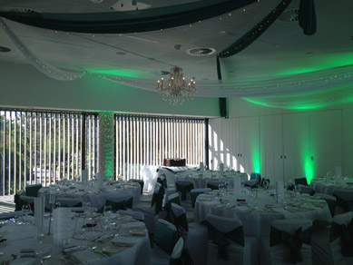 Zoo Sanctuary Green & wh Drapes with Chandeliers 3