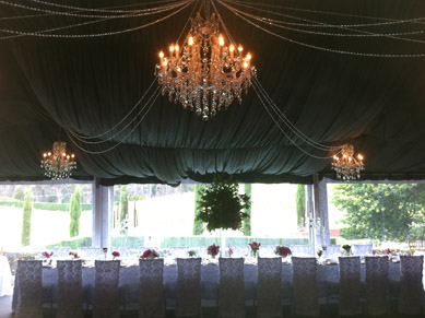 PictureCrystal Chandeliers & Crystal Lines