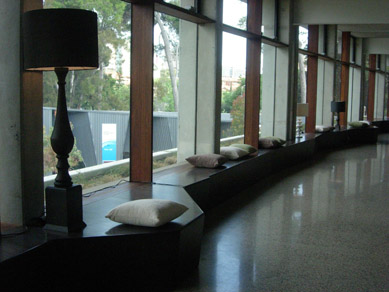 Zoo Sanctuary Foyer Cushions & Lamps 2